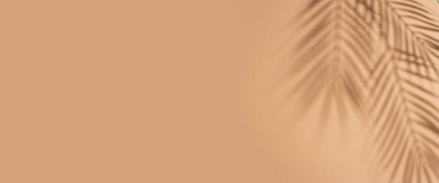 Schaduwen van tropische bladeren van een palmboom op een bruine achtergrond. bovenaanzicht, plat gelegd. banier.