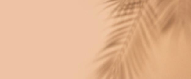 Schaduwen van tropische bladeren van een palmboom op een lichtbruine achtergrond. bovenaanzicht, plat gelegd. banier.