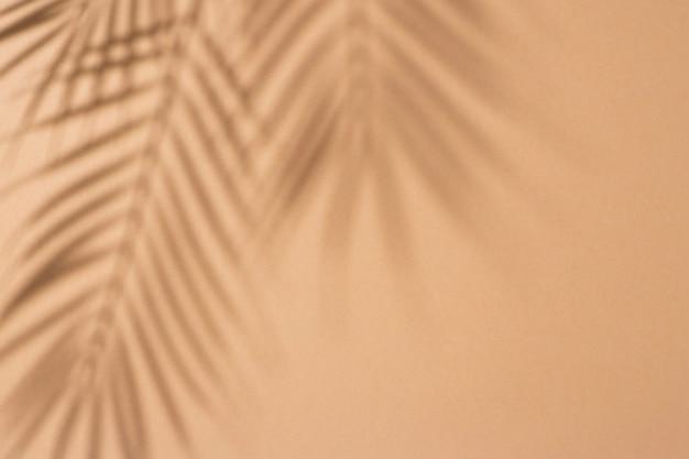 Schaduwen van tropische bladeren van een palmboom op een lichtbruine achtergrond. bovenaanzicht, plat gelegd.
