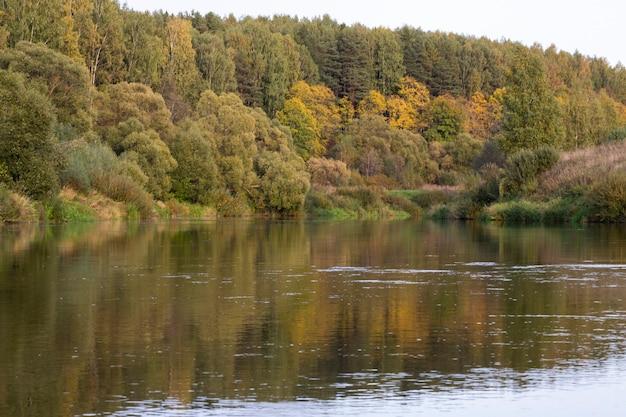 Schaduwrijke bomen waarvan de bladeren geel worden in de herfst midden in een meer met heel helder water