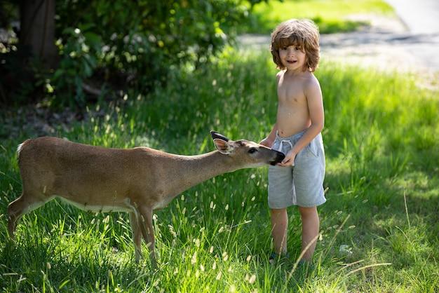Schattig kind voedt een fawn eenheid met de natuur mooie jongen met sierlijk dier bij aanpassing van parkkinderen