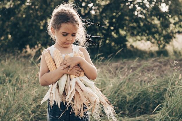 Schattig klein meisje spelen in een maïsveld op een mooie herfstdag. mooi kind met een maïskolf. oogsten met kinderen. herfstactiviteiten voor kinderen.