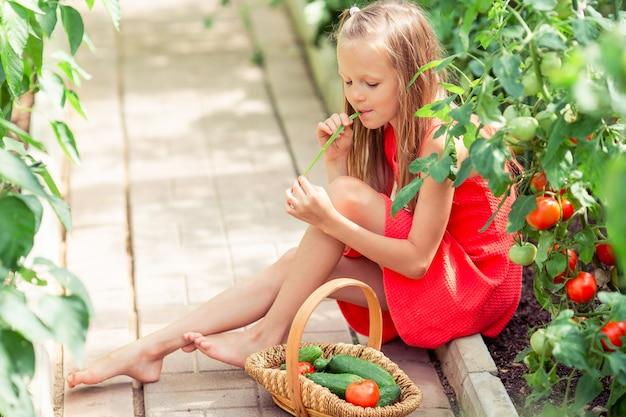 Schattig klein meisje verzamelt gewassen komkommers en tomaten in de kas