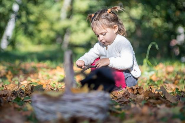 Schattig klein meisje zittend in het gras in het herfstbos op de achtergrond van de mand in vervaging