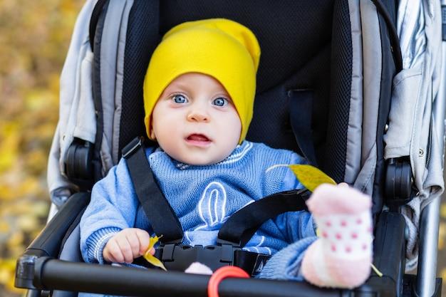 Schattige baby zittend in een kinderwagen in herfst park