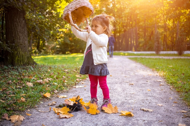 Schattige babymeisje spelen met mand en herfst esdoorn bladeren in herfst bos.