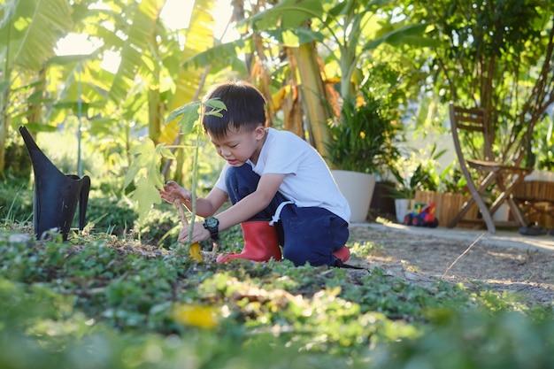 Schattige glimlachende gelukkige jongen die een kleine tuinschop vasthoudt en een jonge boom plant op de grond in de eigen tuin