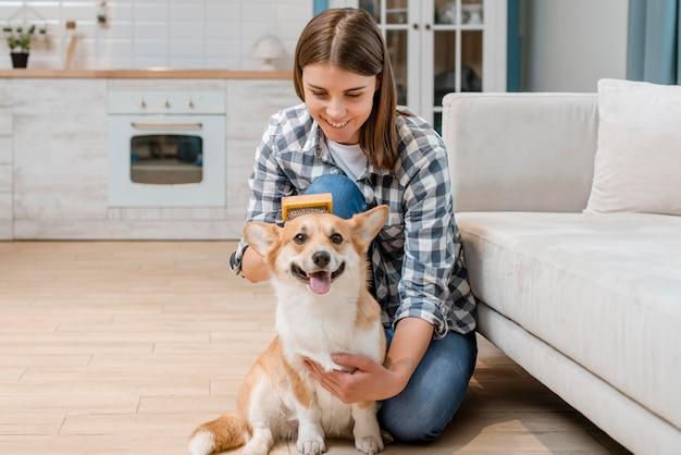 Schattige hond die door vrouw wordt geborsteld