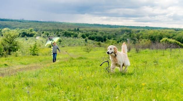 Schattige hond met stok wandelen met mooi meisje vliegende vlieger in de lente natuur Premium Foto