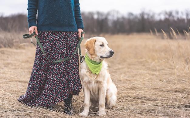 Schattige jonge hond naast vrouwelijke benen in rok