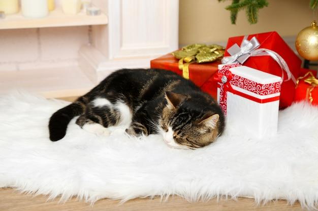 Schattige kat liggend op tapijt voor de open haard