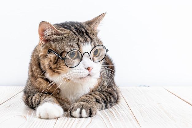Schattige kat met een bril. grappige slimme kat
