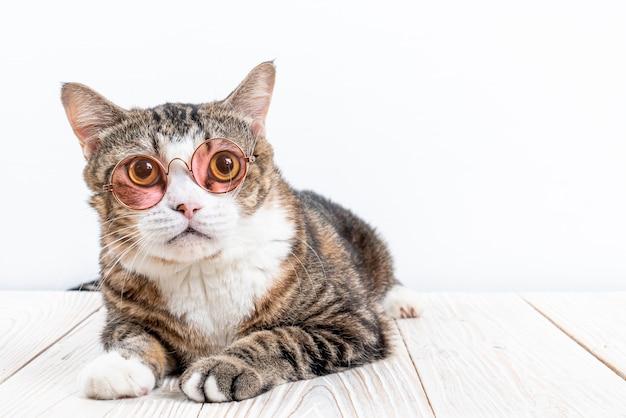 Schattige kat met een bril