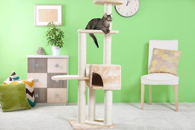Schattige kat zittend op boom in moderne kamer