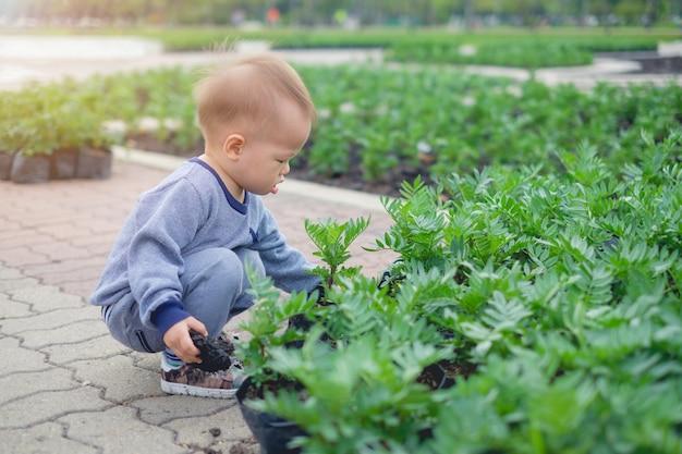Schattige kleine aziatische 18 maanden / 1 jaar oude peuter baby jongen kind aanplant jonge boom op zwarte grond in de groene tuin