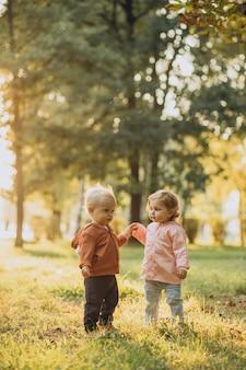 Schattige kleine jongen en meisje samen in herfstpark
