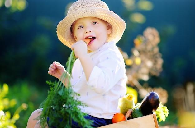 Schattige kleine jongen in strooien hoed eten organische wortel zittend op een houten kist met verse groenten