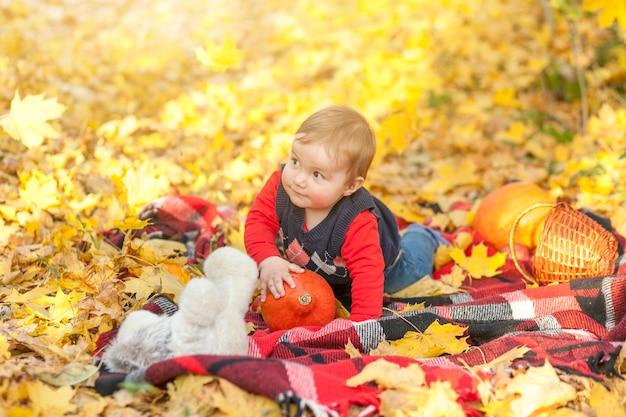 Schattige kleine jongen op een deken wegkijken