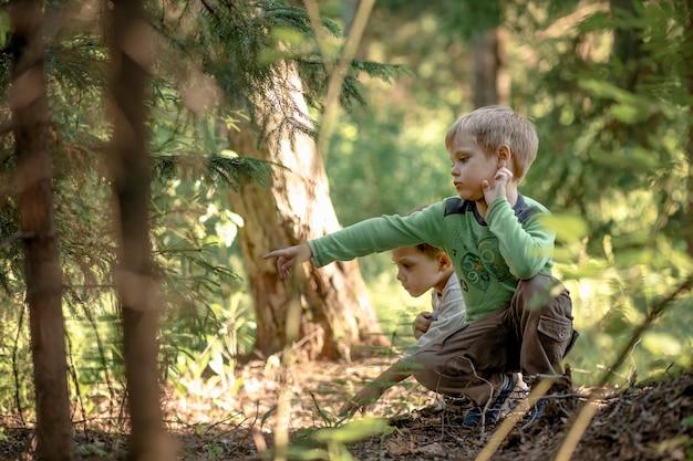 Schattige kleine jongens hurkten op hun hurken in het bos op zoek naar paddenstoelen