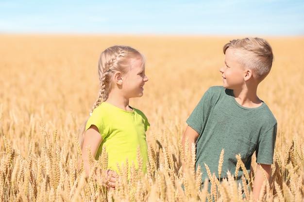 Schattige kleine kinderen in een tarweveld op zonnige dag