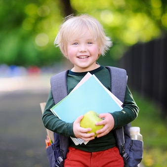 Schattige kleine schooljongen buitenshuis op zonnige herfstdag