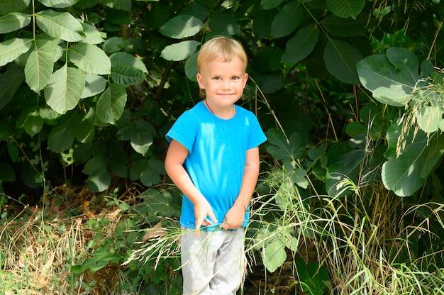 Schattige kleine verwarde vier jaar oude jongen jongen vormt tegen van groene bladeren van de boom tijdens zijn zomervakantie