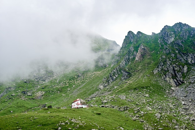 Schattige kleine witte huis op de heuvel in de bergen vallei van roemenië