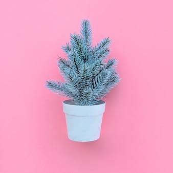 Schattige pijnboom in pot op roze, bovenaanzicht