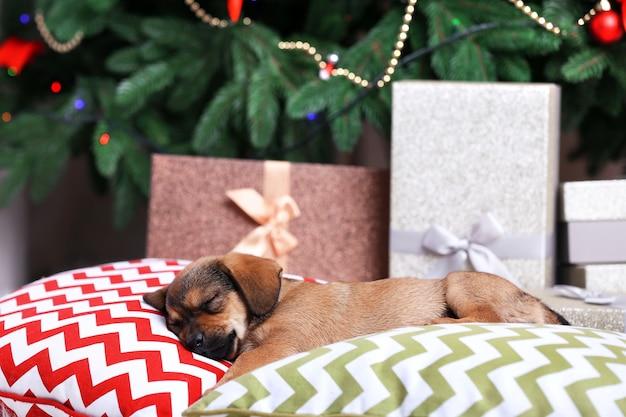 Schattige puppy slapen op kussen op kerstmis achtergrond