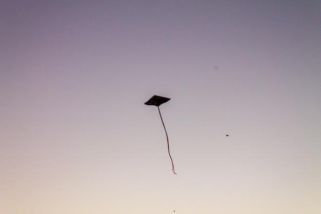 Schattige vliegers die over de zonsonderganghemel vliegen