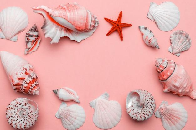 Schelpen achtergrond. frame van witte schelpen, rode zeester geïsoleerd op trendy living coral pastel kleur achtergrond. hallo zomer komt eraan concept