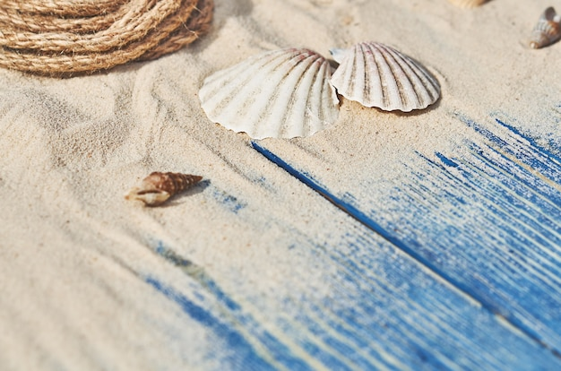 Schelpen en zand op een blauwe houten achtergrond
