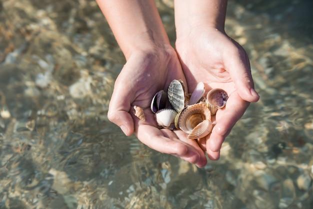Schelpen en zand, schelpen in handen over de zee