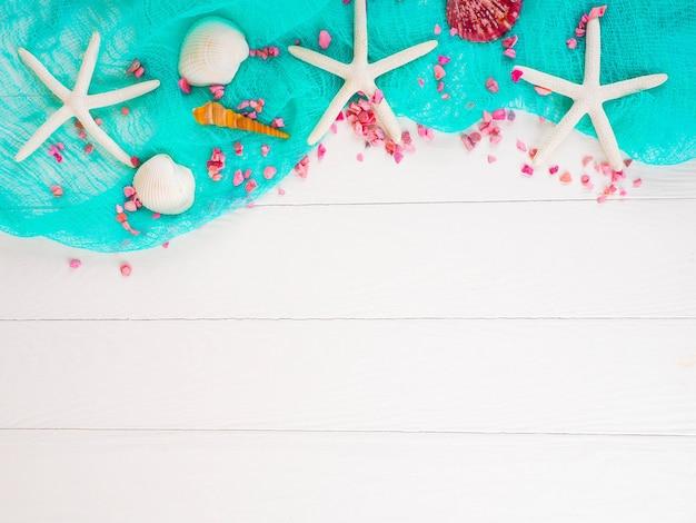 Schelpen op een blauw raster, achtergrond