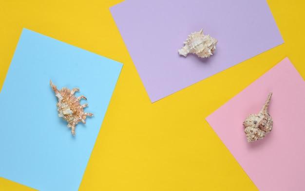 Schelpen op een gekleurd papier achtergrond. bovenaanzicht. minimalisme. kopieer ruimte