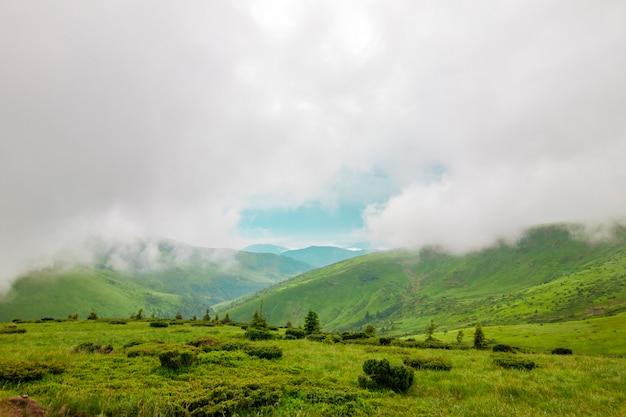 Scherpe groene bergtoppen en hemel met dramatische wolken landschap