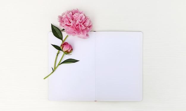 Schetsboek met een pioen