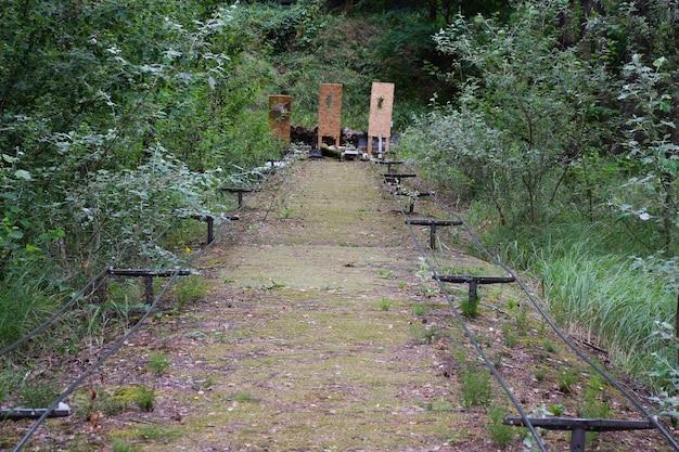 Schietbaan in een zomerbos onder de blote hemel met doelen op de achtergrond