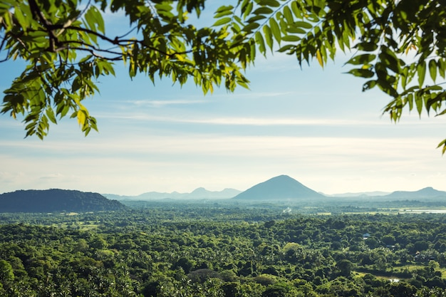 Schilderachtig berglandschap, de natuur van ceylon. sri lanka landschap