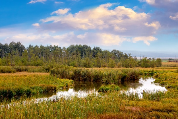 Schilderachtig de herfstlandschap met rivier, bos in de verte en hemel met kleurrijke wolken