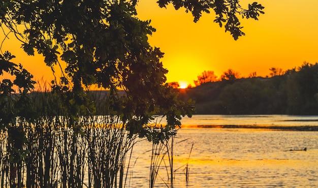 Schilderachtig landschap met rivier en boomtak over water tijdens sunset_