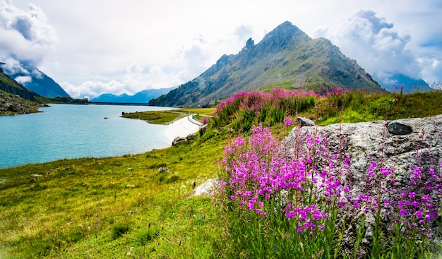 Schilderachtig landschap van de alpen