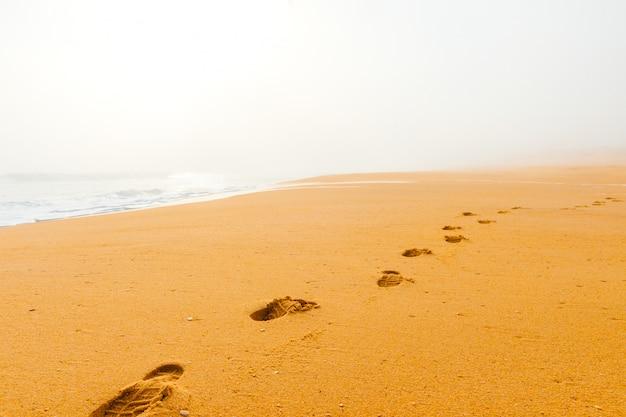 Schilderachtig landschapszeegezicht van mistig nevelig verlaten wild strand. kunst mooi landschap van verlaten kosten met oceaangolven. verlaten mediterrane kustlijn.