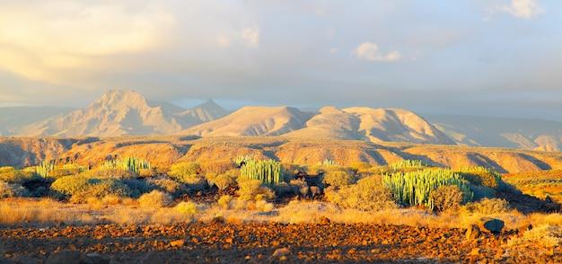 Schilderachtig panoramisch uitzicht op woestijn en bergen bij zonsondergang op tenerife, canarische eilanden.