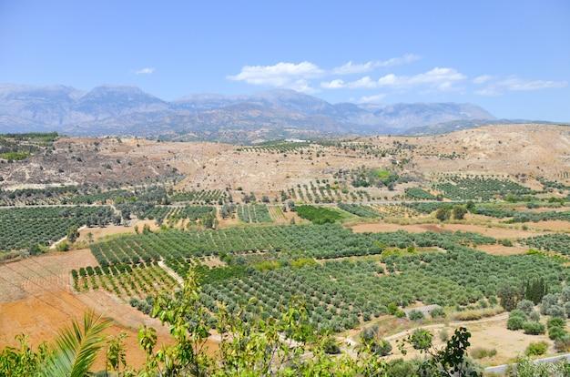 Schilderachtig plateau in griekenland op het eiland kreta