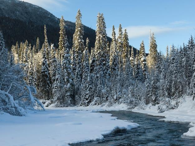 Schilderachtig uitzicht op bevroren meer, regionaal district fraser-fort george, highway 16, yellowhead highway,
