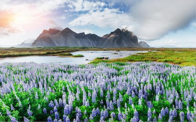 Schilderachtig uitzicht op de rivier en de bergen in ijsland