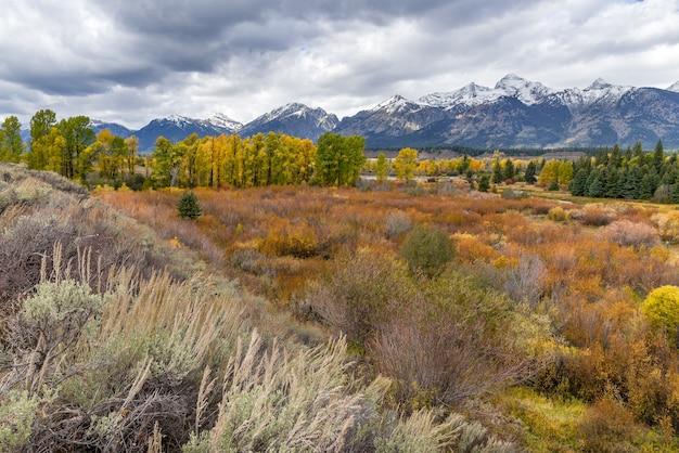 Schilderachtig uitzicht op het grand teton national park