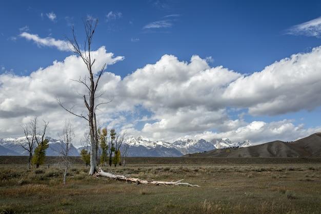Schilderachtig uitzicht op het platteland rond het grand teton national park