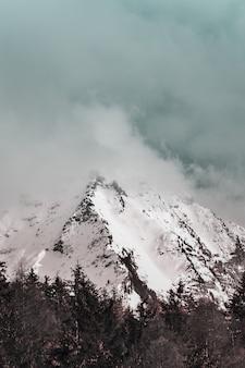 Schilderachtig uitzicht op sneeuw bedekte berg